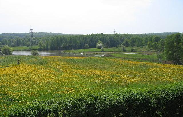 Bitsevsky-park