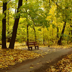 Природно-исторический парк «Покровское-Стрешнево»