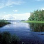 Новгородской парк «Валдайский»